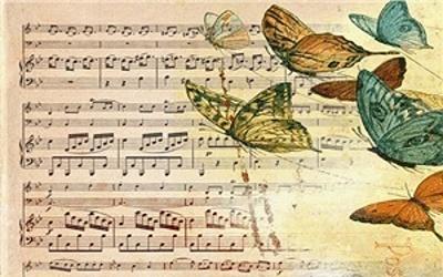 Охота на «бабочек»
